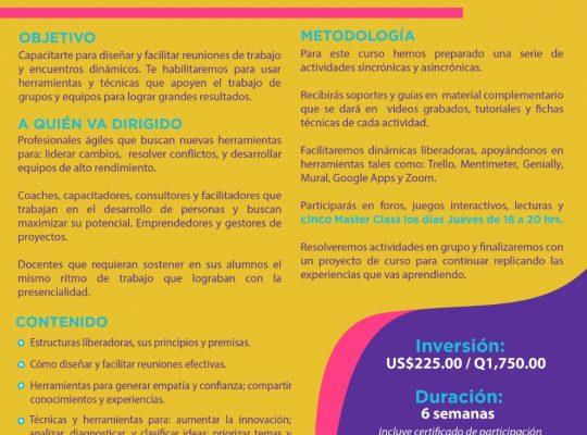 TÉCNICAS Y HERRAMIENTAS PARA FACILITACIÓN DE EQUIPOS