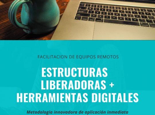 FACILITACION DE EQUIPOS REMOTOS 2DA EDICION